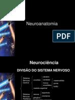 neuroanatomia (1)