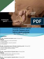 2.Patologia Glandelor Salivare