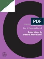 Curso Basico de Derecho Internacional