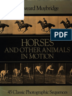 Muybridge,1985,Horses and Other Animals in Motion.pdf