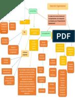 esquema desarrollo organizacional