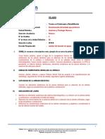 Modelo de Llenado Del Nuevo Silabos.