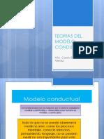 paradigma conductual