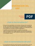Biorremediacion Del Aire