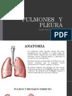 Pulmones , Pleura, Mediastino y Esofago Dr. Sanchez Bardales