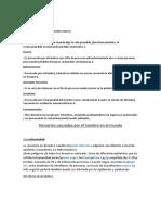 DESASTRES ARTIFICIALES.docx