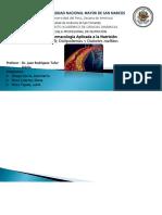 diapositivas de Diabetes Mellitus.pptx