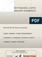 Atp Musculo