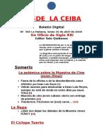 Desde La Ceiba Nº 343 (Extra)