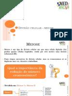 2 Divisão Celular - Meiose.pptx
