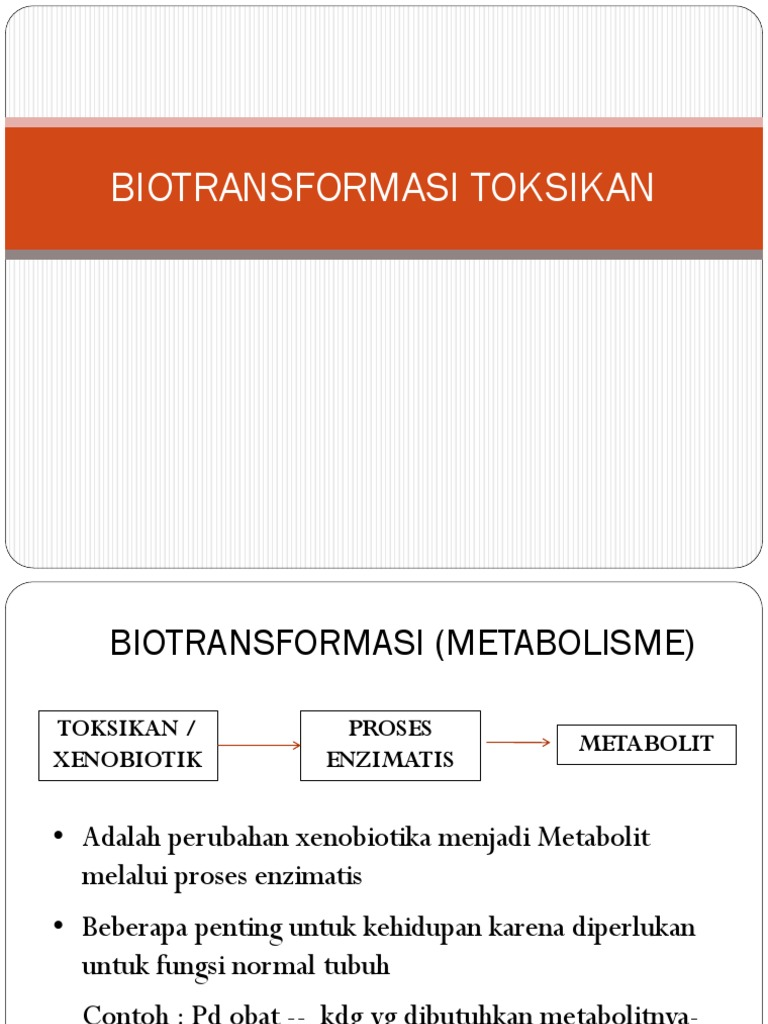 Pertemuan 3 Biotransformasi Toksikan Pdf