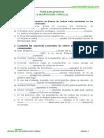 EJERCICIOS VERBOS 1.pdf