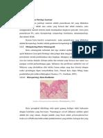Pemeriksaan Patologi Anatomi (Histopatologi)