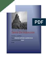 modelo_tarea (1).docx