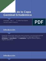 Derivados de la Capa Germinal Ectodérmica.pptx