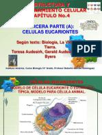 bio 10°-4C estruc funci celular III-A-Parte 2018