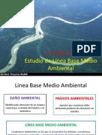 Estudio de Línea Base Medio Ambiental-1