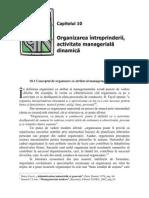 10.Organizarea Intreprinderii Activitate Managerial A Dinamica