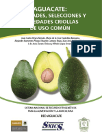 Aguacate Variedades Selecciones y Variedades Criollas de Uso Comun