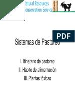 Sistemas Pastoreos Animal.pdf