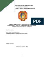 INFORME CACHINBADA.docx