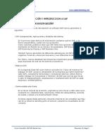 RESUMEN introduccion a modulo sap fi.pdf