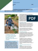 La Agricultura Por Contrato Incrementa Los Ingresos Para Agricultores en Mejores Condiciones