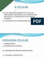 FISIOLOGIA CELULAR.pptx