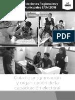 Guia programacion ERM 2018_final.pdf