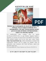 LA PRIMOGENITURA DE JOSE.doc