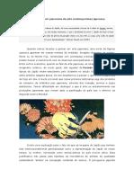 338404628-Um-Panorama-Da-Arte-Contemporanea-Japonesa.pdf