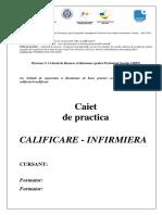 Caiet Practica INF Integral