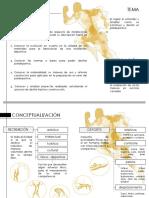 conceptualizacion - objetivos.pptx