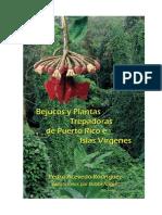 Bejucos y plnatas trepadoras de puerto rico e isalas virgenes.pdf.pdf