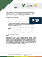 Informe Final- Problemas y Estrategias de La Enseñaza