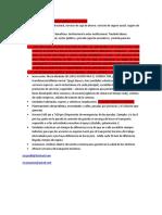 puntos del proyecto2.docx
