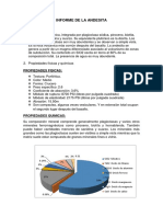 Informe de La Andesita