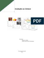 2011_Octave_Galo_Camargo.pdf