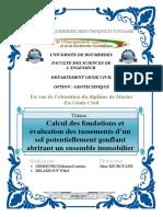 Mémoire PDF (1)