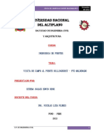 196741826-Informe-de-Puentes-Pto-Maldonado.pdf