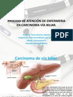 carcinoma vía biliar