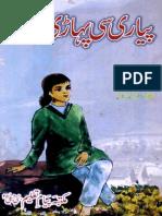 PYARI SI PAHARI LARKI.pdf