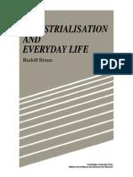 industrialización y cotidianidad