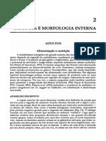 Biologia e morfologia do Aedes