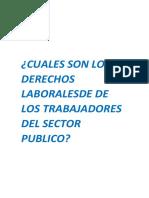 Cuales Son Los Derechos Laboralesde Los Trabajadores Del Sector Publico