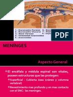 meninges-2013.ppt