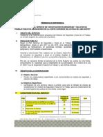Tdr Contratacion de Capacitacion Sst - 2018