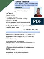 curriculum perales.docx