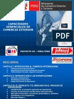 Guia de Capacidades Gerenciales CE.ppt1294234665