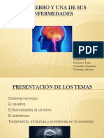 El Cerebro.trabajo Tecnologia